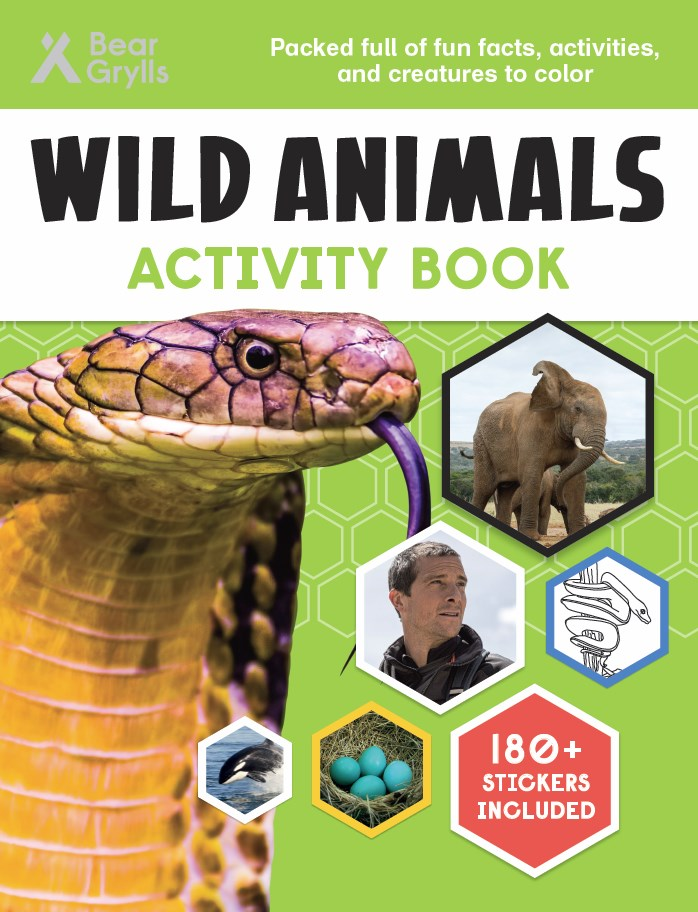 Wild Animals Activity Book cover